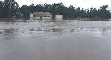 নবীগঞ্জের কুশিয়ারার পানি বিপদসীমার উপরে