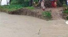 বিয়ানীবাজারে শেওলায় কুশিয়ারা নদীর বাঁধ ভেঙ্গে গেছে